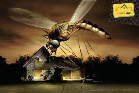 افضل طرق مكافحة حشرات الصيف